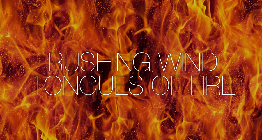 """""""Untangled Tongues"""" - Noe Valley Ministry"""